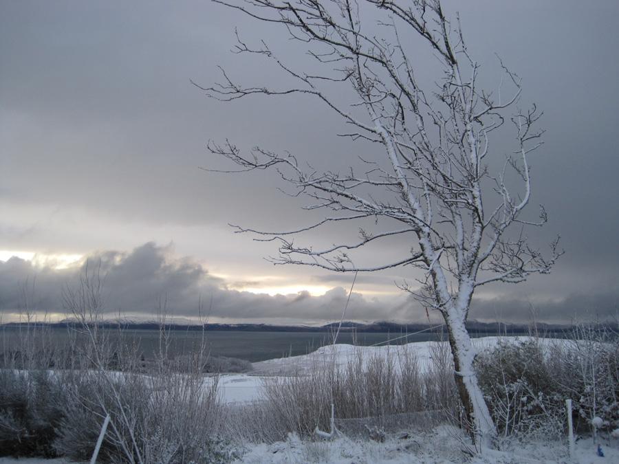 november-snow-2010-0061