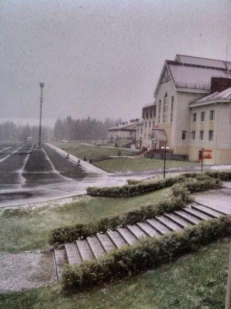 белая снег1