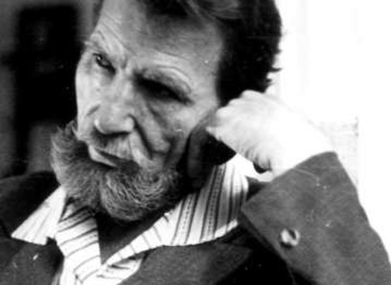 Владимир Полев