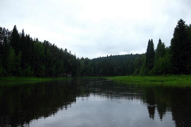 Река Межевая Утка близ д. Баронской