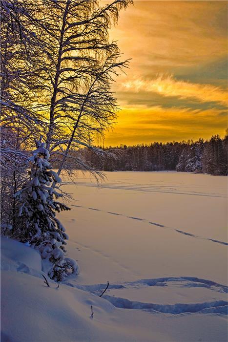 «Морозный вечер»  Марии Безбородовой
