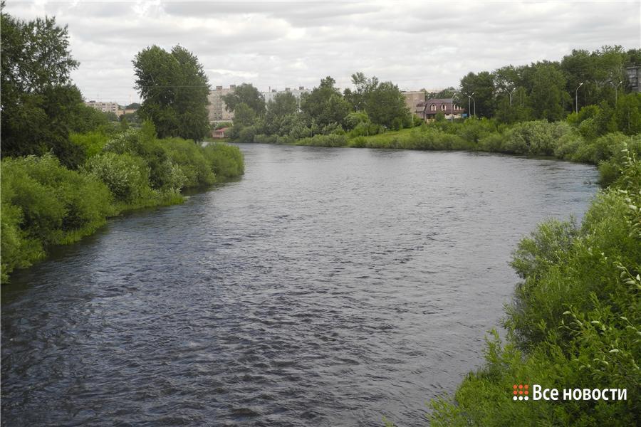 Пойма реки Тагил летом