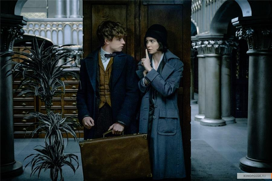 kinopoisk-ru-fantastic-beasts-and-where-to-find-them-2789746