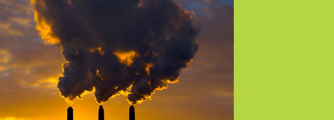 Экологи собирают подписи