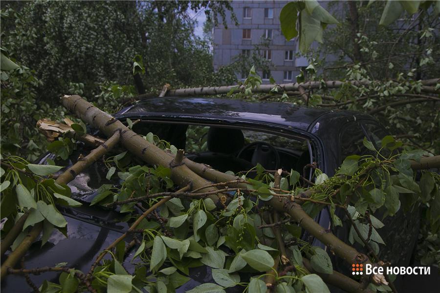 Погода на сентябрь в днепропетровской области