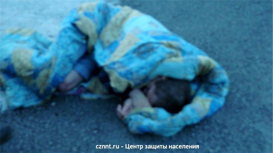 Под Нижним Тагилом утонула 14-летняя девочка