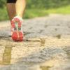 Тагильчан зовут пробежать 160 километров на «Висимский пикник»