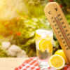 Готовьте панамы: в предстоящие выходные в Нижний Тагил придёт жара