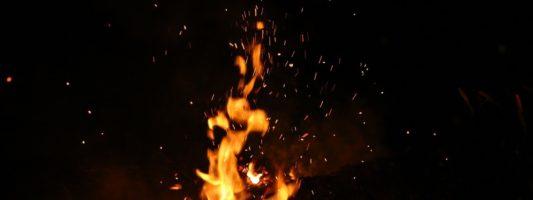 Пинаев разрешил горожанам жечь костры и готовить шашлык